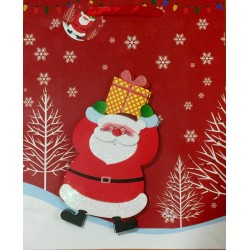 PAPER BAG MEDIUM - SANTA CLAUS IN SNOW (PACK OF 12)